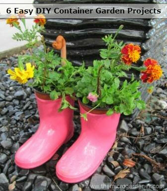 My kid's gumboot flower planters help brighten up our pathway | The Micro Gardener