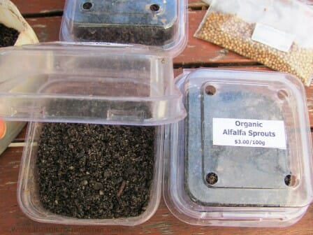 Adding seed raising mix to greenhouses | The Micro Gardener