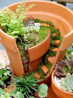 Miniature garden in a pot | The Micro Gardener