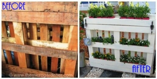 Raw timber pallet upcycled into painted planter