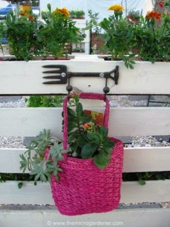 Hanging handbag planter. | The Micro Gardener