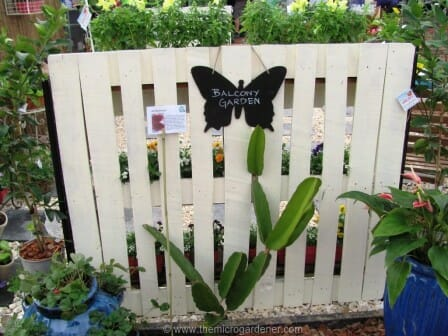 Upcycled pallet fence supported by 2 long lasting black coated steel star pickets   The Micro Gardener