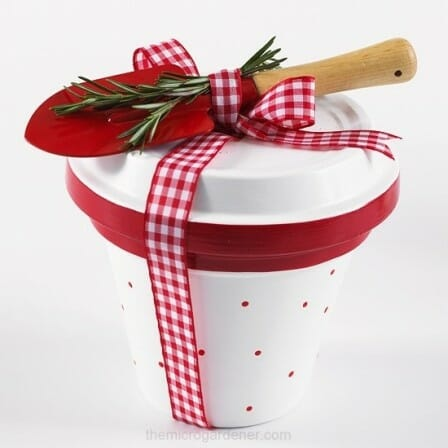 Mini painted pot  and saucer with tool + seeds inside gift idea | The Micro Gardener
