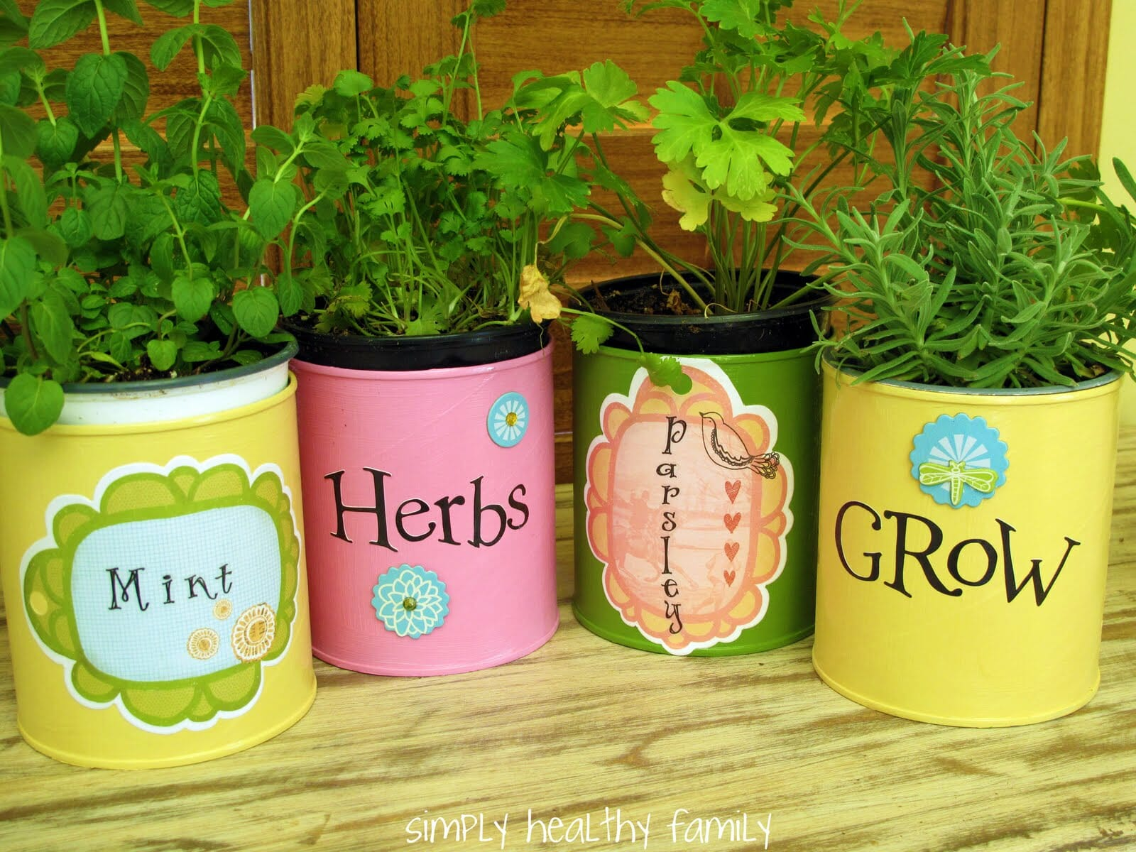 Tin can herb container gardens make easy, economical gifts | The Micro Gardener