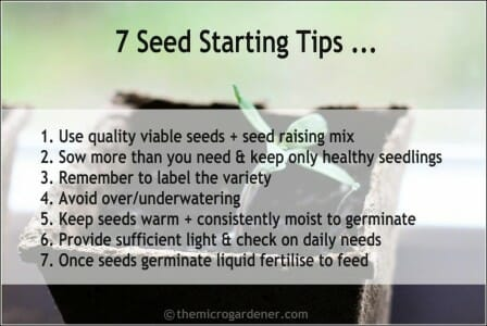 7 Seed Starting Tips for Successful Seed Raising