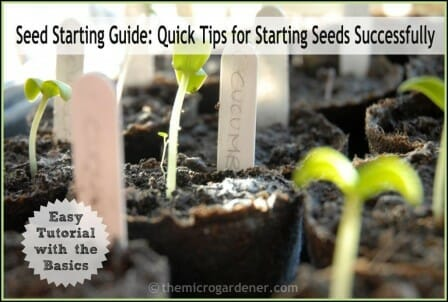 Seed Starting Guide: Quick Tips for Starting Seeds Successfully