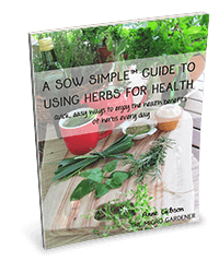 A Sow Simple Guide to Using Herbs for Health eBook by Anne Gibson, The Micro Gardener