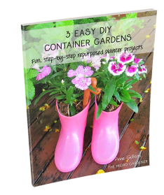 3 Easy DIY Container Gardens eBook