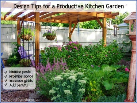 Design Tips for a Productive Kitchen Garden