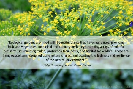 Design tips for a productive kitchen garden the micro for Garden design quote