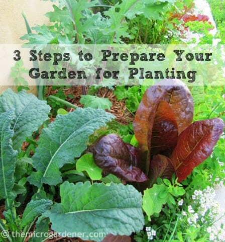 3 Steps to Prepare Your Garden for Planting: Follow this easy-to-understand guide to getting great results from your garden. | The Micro Gardener