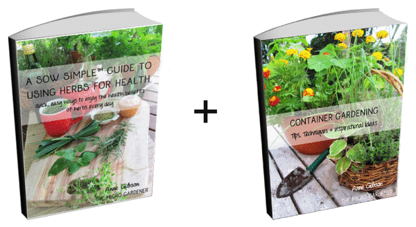 """Start learning now with these ts """"A Sow Simple™ Guide to Using Herbs for Health"""" eBook Container Gardening Tips Guide Value $10"""