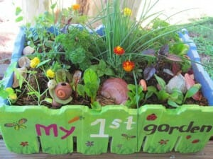 Kids salad garden in a box