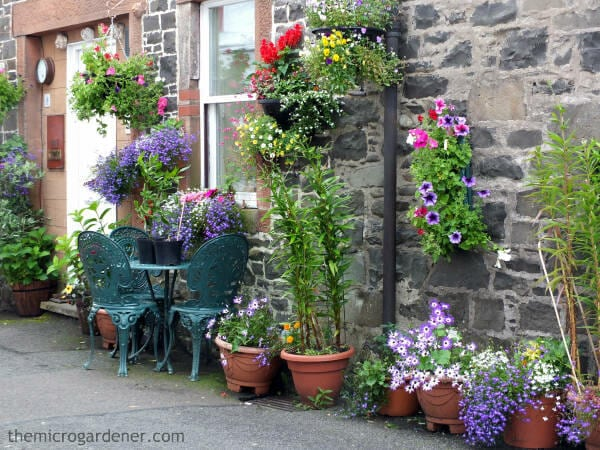 Hanging and wall mounted container gardens maximise vertical space and create impact in a small garden design. | The Micro Gardener