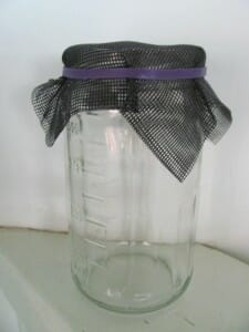 Jar with fly wire & rubber band