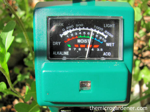 Waterlogged Plants Tip: Moisture meters help you know when your plant needs watering and when to leave it alone!