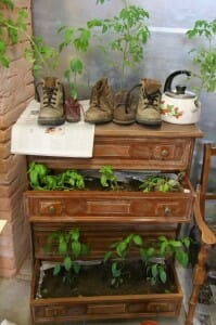 With a little imagination, there are lots of new ways with old things. | The Micro Gardener www.themicrogardener.com Here's a great example with a chest of drawers, boots and kettle.