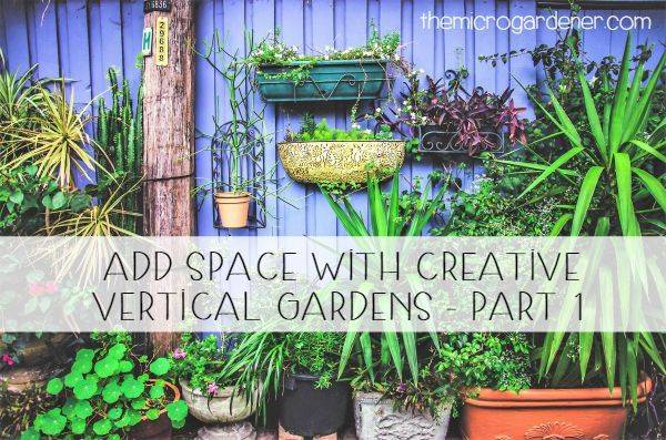 Add Space with Creative Vertical Gardens Part 1
