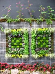 Vertical garden wall art. Flickr Photo: The Blue Girl