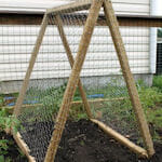 Portable A-frame trellis - an easy DIY lightweight design that you can take with you.