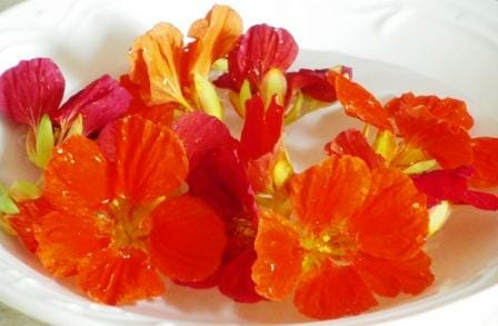 20 Uses for Nasturtiums: As table decorations, just float a few nasturtium blossoms in a bowl.