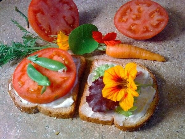 Get creative with nasturtiums and make your own sandwich art!