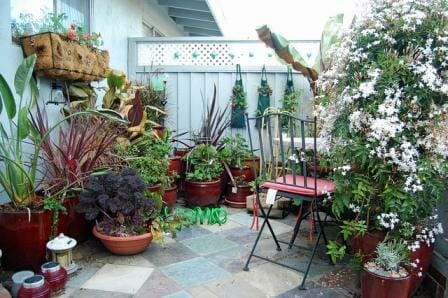 Garden Ideas For Narrow Spaces home garden for small spaces Fence And Wall Space Has Also Been Utilised With A Planter On A Bracket And Three