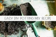 Easy DIY Potting Mix Recipe