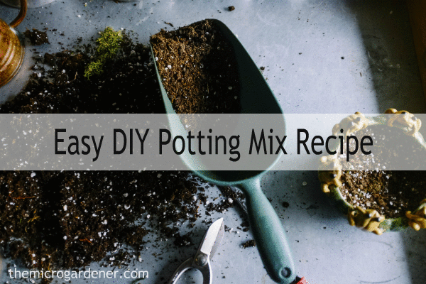Easy DIY Potting Mix Recipe: I fried my seedlings in what I thought from the label was 'potting mix with fertiliser' but was actually almost 100% fertiliser; starved my plants with the next bag that didn't have any food in it at all; and another bag was virtually dead dirt that wouldn't grow anything.