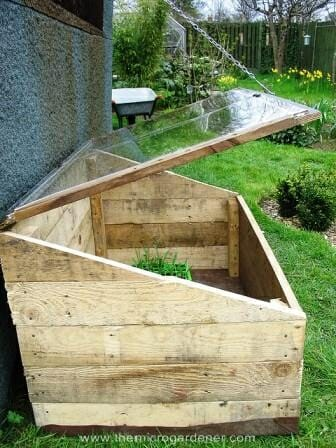 Glasshouse made from 2 salvaged pallets | The Micro Gardener www.themicrogardener.com