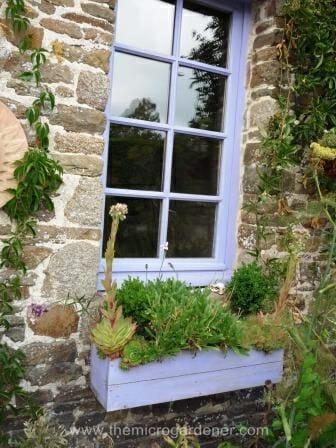 Recycled pallet window box | The Micro Gardener