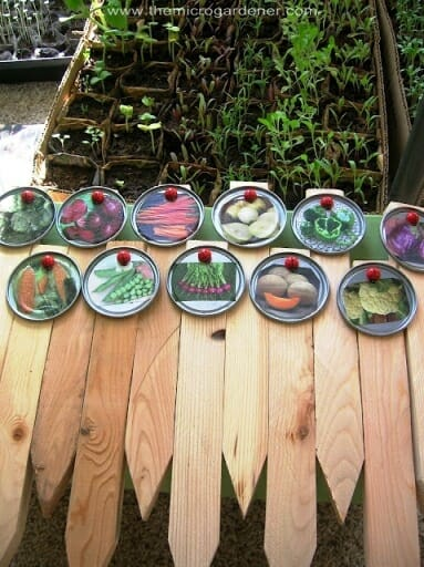 Exceptionnel Lid Plant Markers | The Micro Gardener