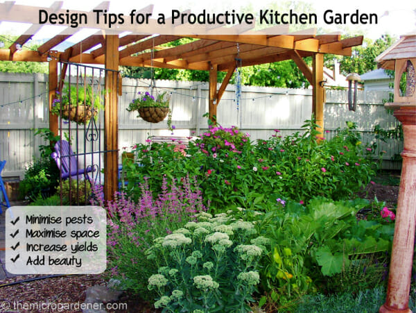 Design tips for a productive kitchen garden the micro for Kitchen garden design