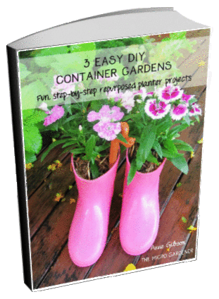 3 Easy Container Gardens eBook