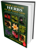 How can I use Herbs in My Daily Life by Isabell Shipard