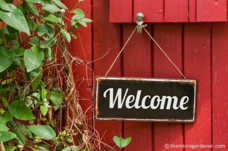 Time to put out the welcome sign and invite your plant 'guests' in!