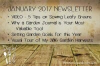 The Micro Gardener January 2017 Newsletter - Dig into Tips on Sowing Leafy Greens, Garden Journals, 2017 Garden Goals + My 2016 Garden Harvests