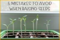 5 Mistakes to Avoid When Raising Seeds
