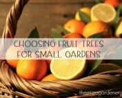 The taste and satisfaction of picking homegrownfruit is one of life's pleasures!