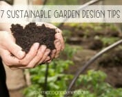 7 Sustainable Garden Design Tips