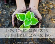 How to Use Compost and 7 Benefits of Composting