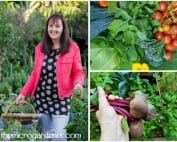 2017 tour and harvests from my garden | The Micro Gardener
