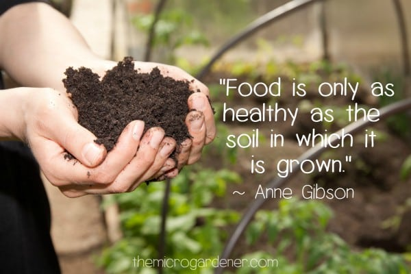 """Food is only as healthy as the soil in which it is grown."" Anne Gibson"