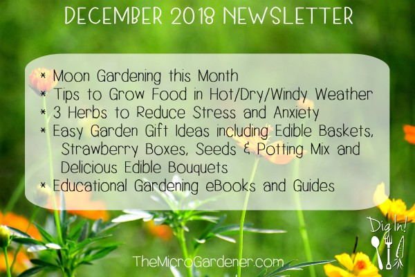 December 2018 Newsletter | The Micro Gardener