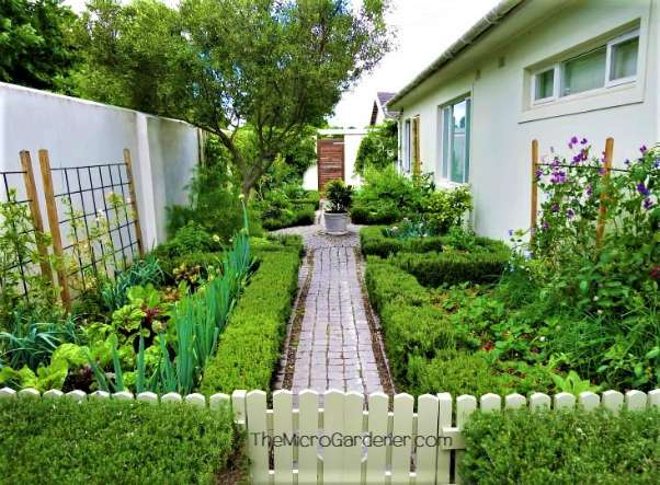 Grow More Food in a Small Garden Space Tip: This narrow space is divided with a pathway and picket fence to keep animals out with a feature pot beyond. Trellises at the back of raised gardens are perfect for climbers to take advantage of sunny vertical space & add interest to break up pale walls.