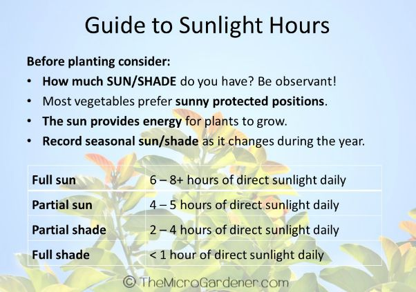 40+ Best Shade Tolerant Vegetables: Guide to Sunlight Hours direct sun and partial shade table | The Micro Gardener