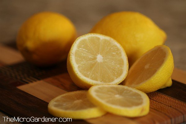 Tasting the flavour of a lemon and juicing it can help you determine if it's ripe