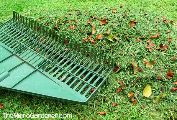 Dry dead leaves mixed with green grass clippings can both be used as compost ingredients