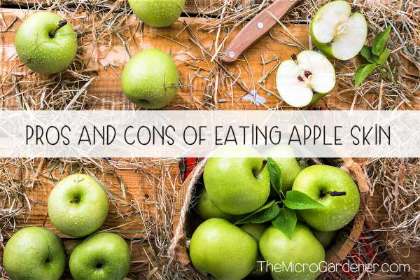 Pros and Cons of Eating Apple Skin