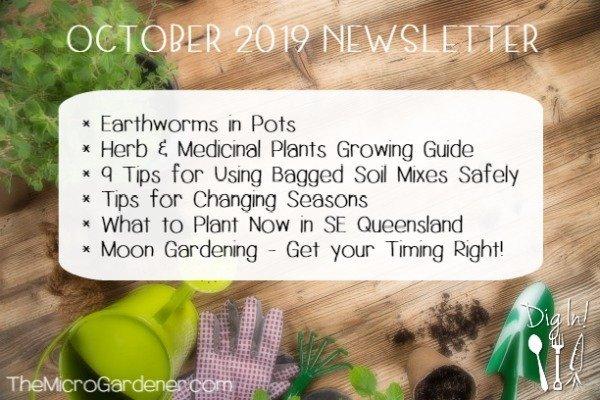 October 2019 Newsletter | The Micro Gardener